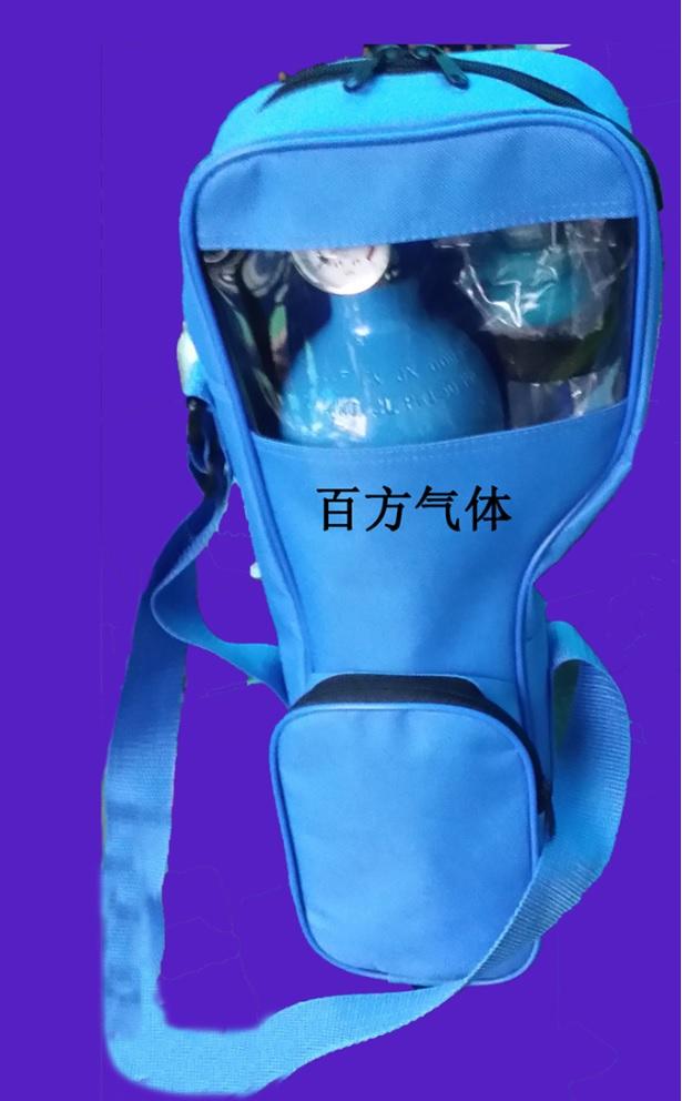 2L医用氧气(带背包)